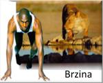 BRZINA150X121